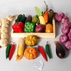 Models Vegetables